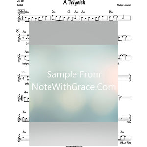 A Tni'eleh Lead Sheet (Shulem Lemmer) Album: Shulem-Sheet music-NoteWithGrace.com