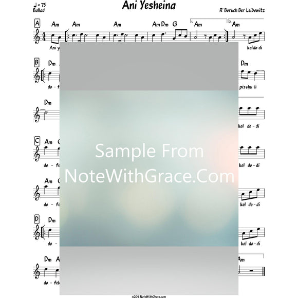 Ani Yesheina Lead Sheet (Traditional/Reb Boruch Ber Leibowitz)-Sheet music-NoteWithGrace.com