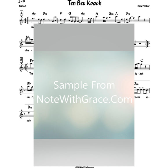 Ten Bee Koach Lead Sheet (Beri Weber) Album: Beezras Hashem 2014-Sheet music-NoteWithGrace.com