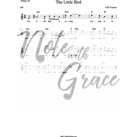 The Little Bird Lead Sheet (MBD)-Sheet music-NoteWithGrace.com