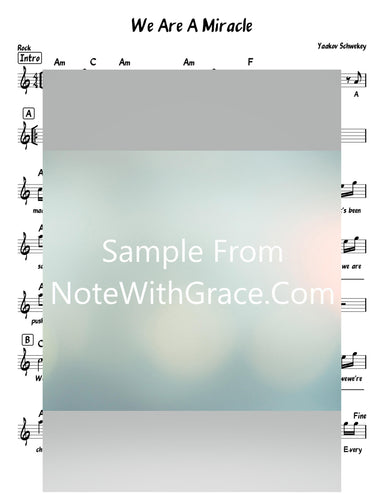 We Are A Miracle Lead Sheet (Yaakov Schwekey) Album: Single 2016-Sheet music-NoteWithGrace.com
