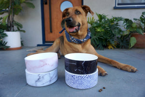 Modern Ceramic Dog Bowl in Pink Marble