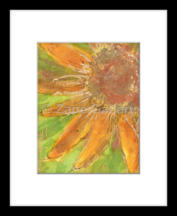 Sunflower Beauty - 8