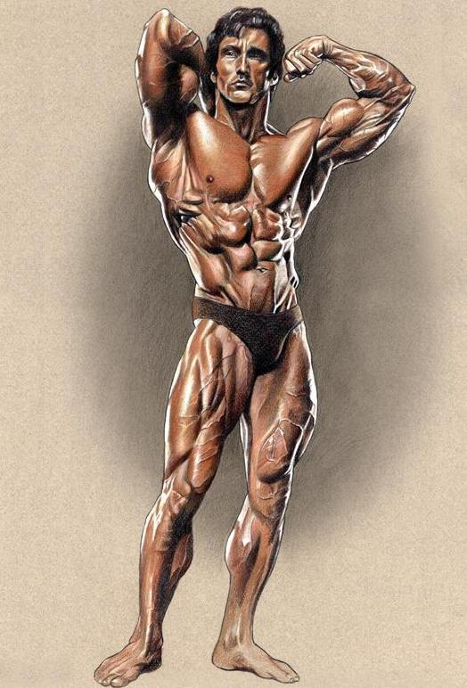 Zane Colored Poster Print autographed by Frank Zane  - 13