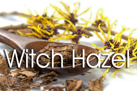 Top 10 Uses for Witch Hazel