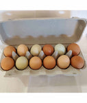 Eggs -- Farm Fresh 1 Dozen