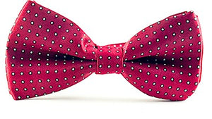 Brick Red White Micro Dot - J.Cooper Classic Neckwear & Accessories