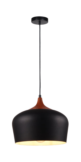 NEARLY SOLD OUT!  12 inch Black Aluminum Pendant Light