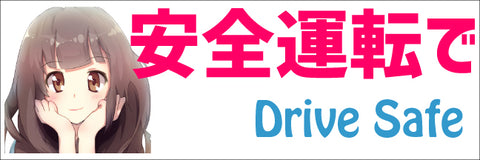 Drive Safe Large Bumper Sticker 9x3 in