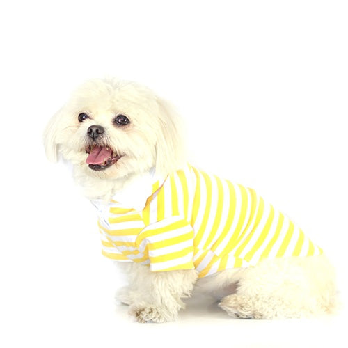 Stripe Polo Shirt - Yellow