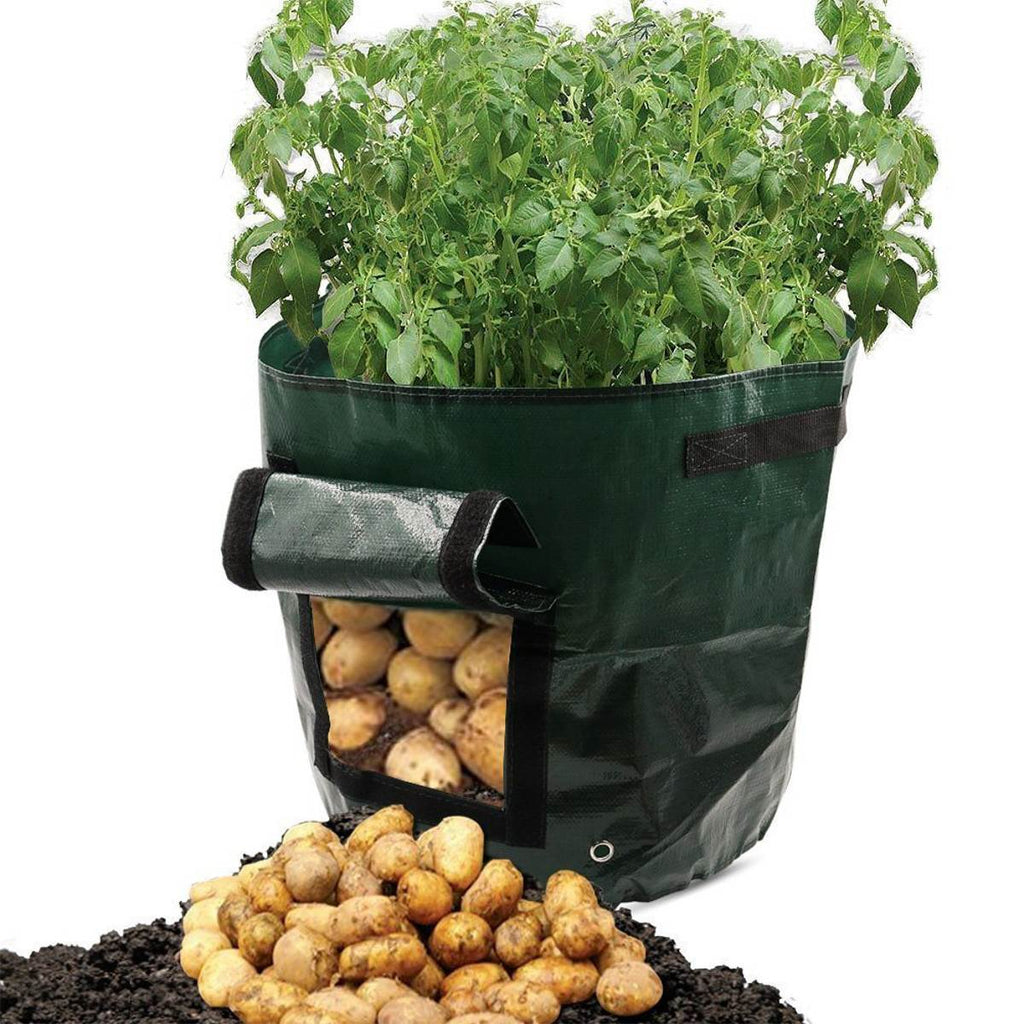 """Vegetable Grow Bag"" Eco-friendly Waterproof"