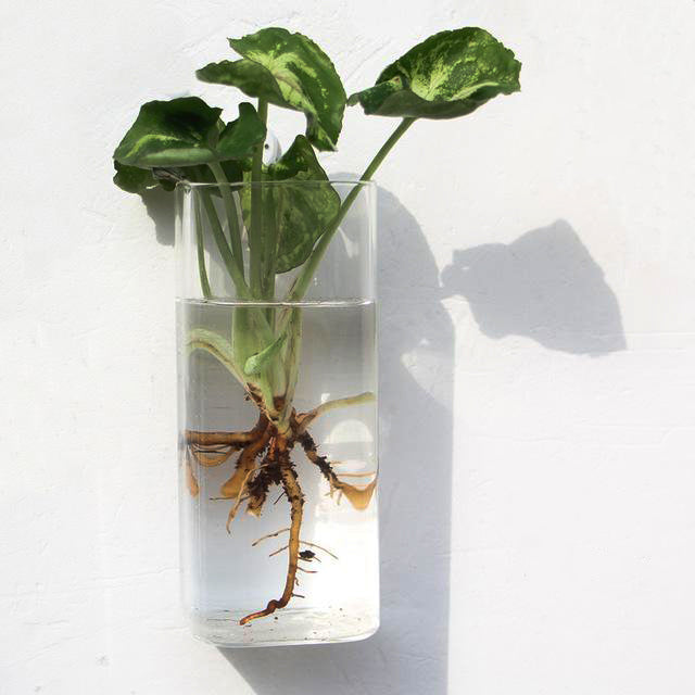 Zero-Gravity Glass Vases