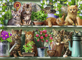 Ravensburger - Cats on the Shelf 500pc