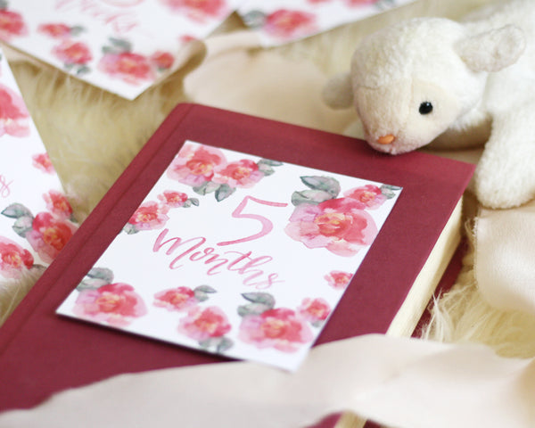 Baby Milestone Cards- Pink Flowers - Honey Brush Design