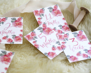 Baby Milestone Cards- Pink Flowers