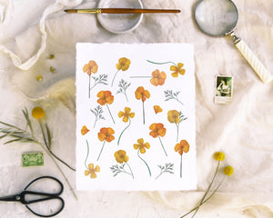 'Pressed Poppies' Print