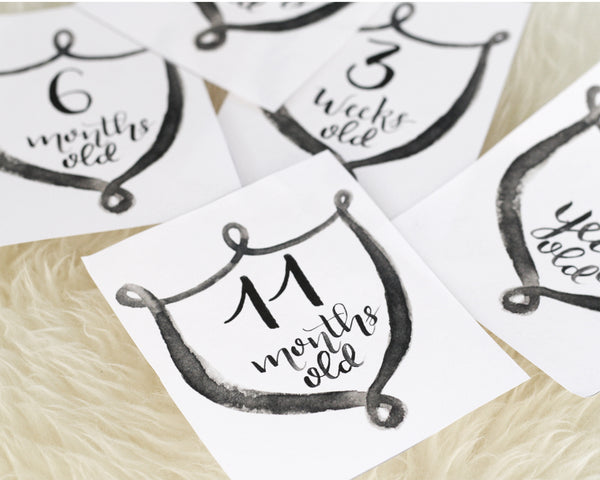 Modern Shield  Baby Milestone Cards - Honey Brush Design