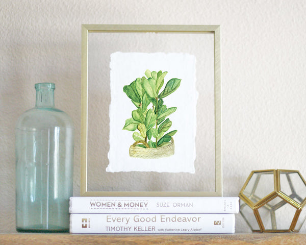 'Fiddle-Leaf Fig' Print - Honey Brush Design