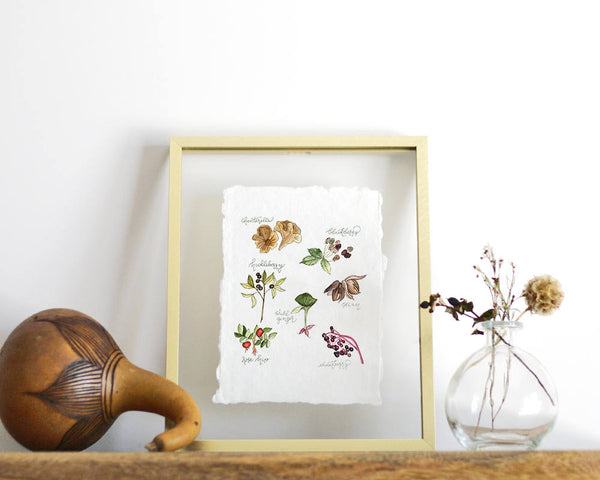 'Foraged Foods' Print - Honey Brush Design