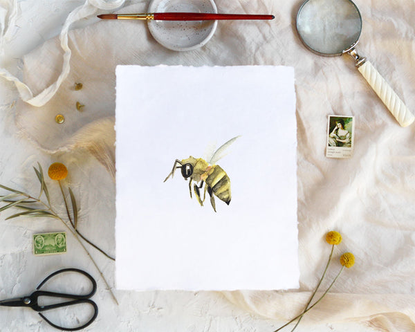 'Little Bee' Print - Honey Brush Design