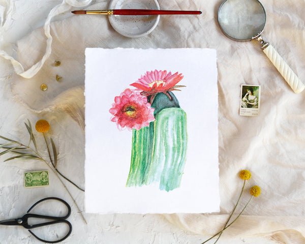 'Cactus Flower' Print - Honey Brush Design