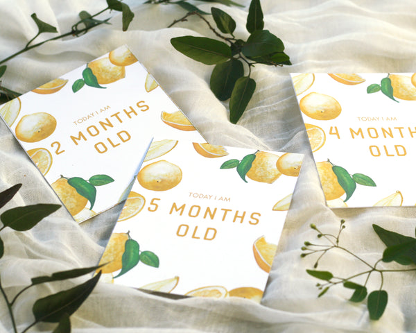 Lemon Baby Milestone Cards - Honey Brush Design
