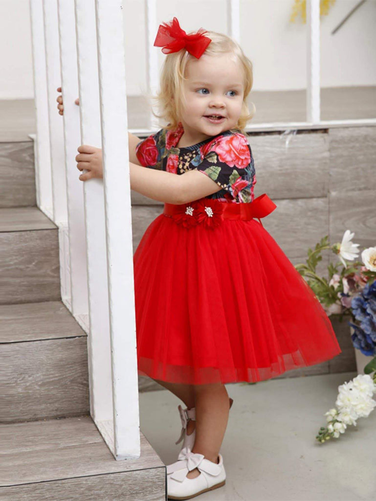 Toddler Girls Floral Contrast Mesh Ball Gown Dress