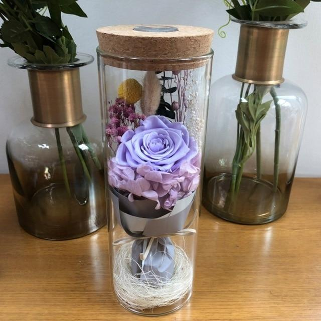 Decorative Lighted Prince Glass Cover Fresh Preserved Rose Flower Immortal Eternal Rose For Valentine's Day Christmas Wedding - LoveLuve