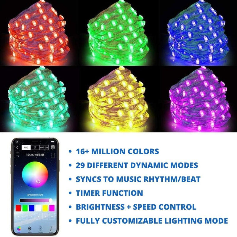 products/Christy_sAPPA.I.ControlledChristmasStringLights.jpg