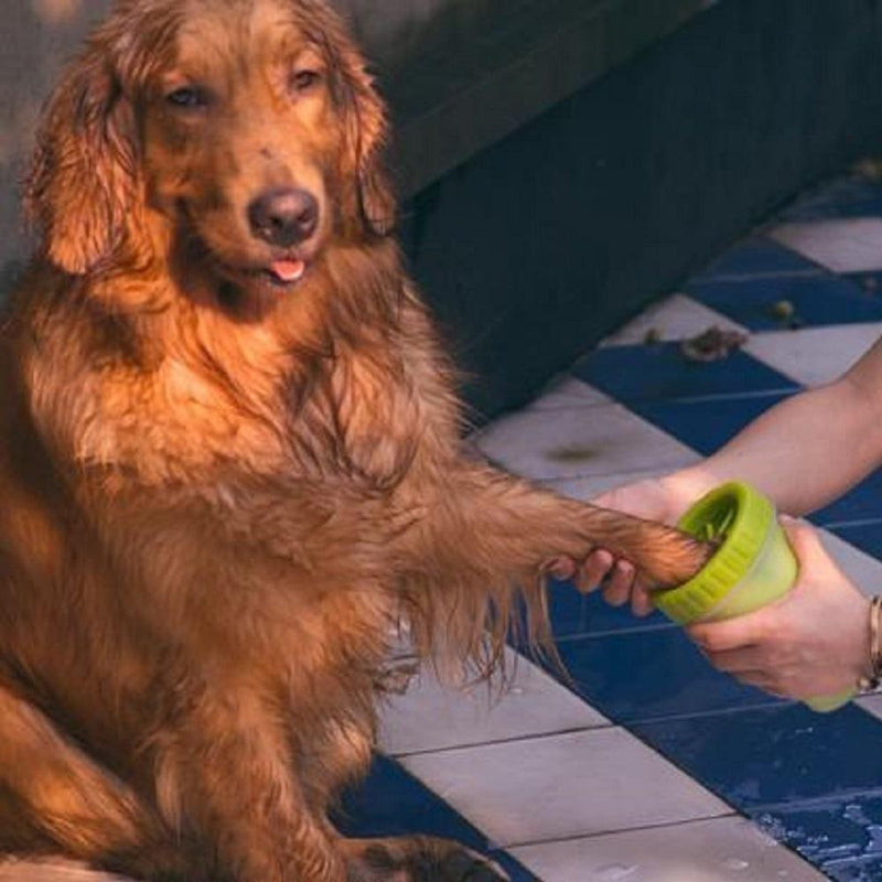 products/inspire-uplift-pet-paw-cleaner-green-pet-paw-cleaner-12857294684259.jpg