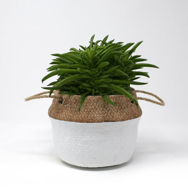 BASKET Two-Toned Planter