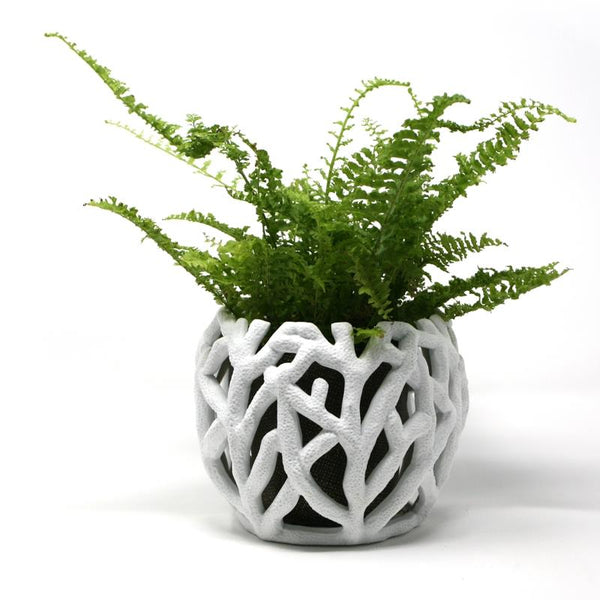 BRAKA Decorative Planter