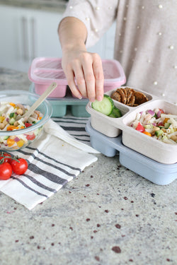 3 Compartment Square Bento Box- Individual