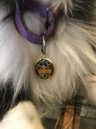 Pet Collar Charm- Adventure Dog