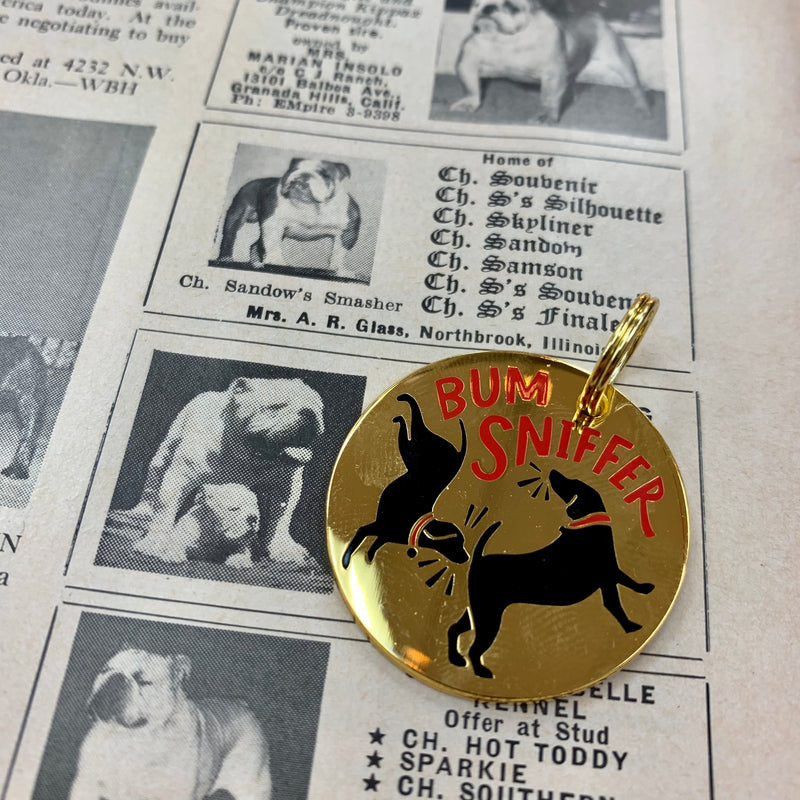 Pet Collar Charm- Bum Sniffer