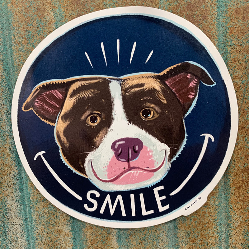 Smile Car Magnet