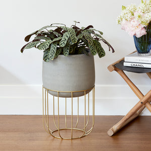 Zoe series - Medium pot planter with steel legs - CONCRETE