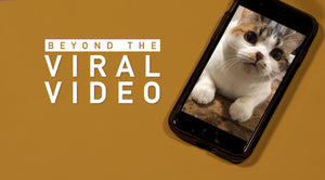 Beyond the Viral Video