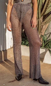 Metallic Mesh Pants