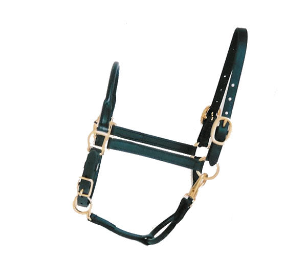 Rolled Arabian Stable Halter - Yearling size only