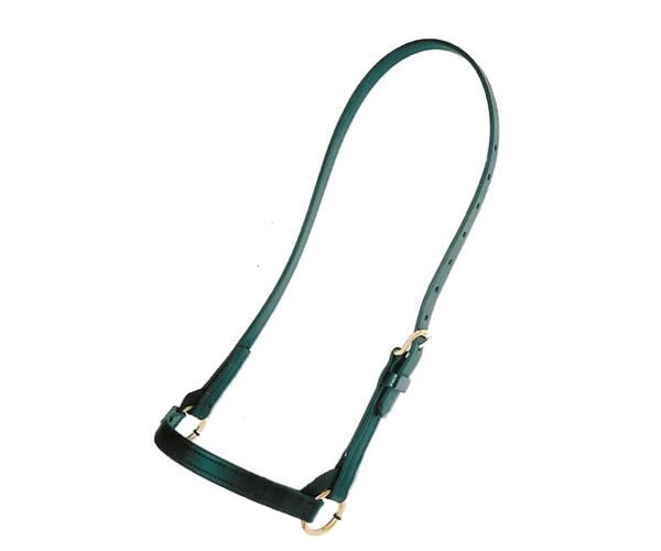 Standard Training Halter