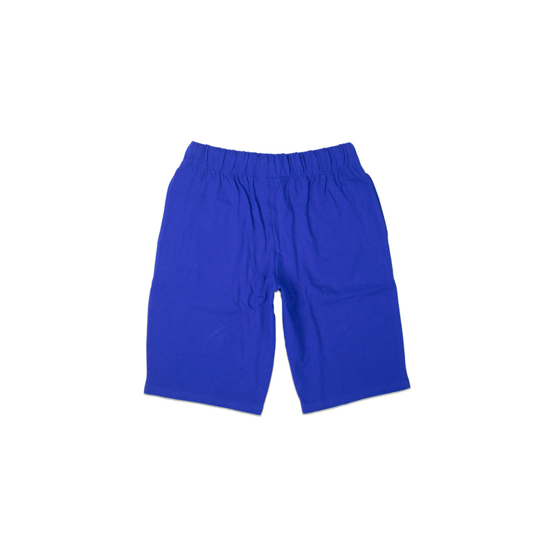 Champion Men's Jersey Jam Shorts Surf The Web Back