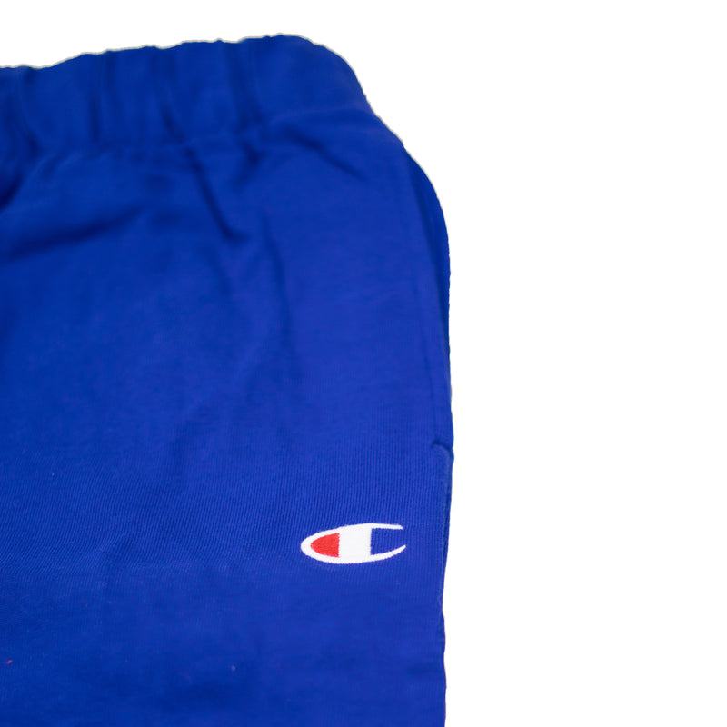 Champion Men's Jersey Jam Shorts Surf The Web Logo
