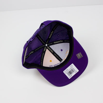 Mitchell & Ness Los Angeles Lakers Division Mesh Snapback Hat Purple & Gold Bottom