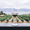 6 Vegan Wines to Buy for the Environmentalist