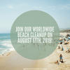 Join Our Worldwide Beach Cleanup On August 17th, 2019!
