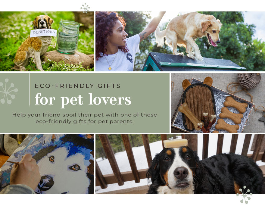 ECO-FRIENDLY GIFTS FOR PET LOVERS
