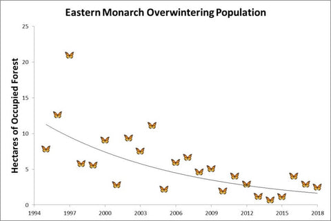 monarch butterfly population decline educated earthling