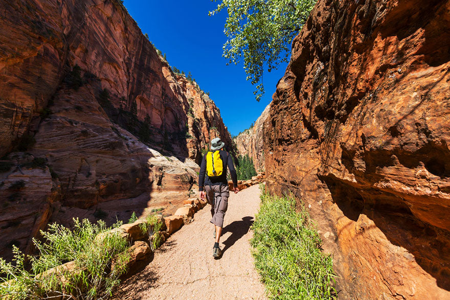 walking through a path in zion national park