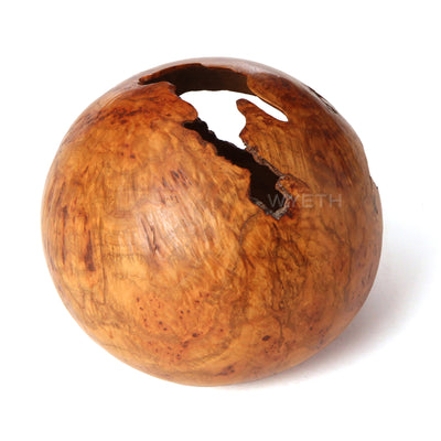 Red Oak Burl Hollow Form Vessel - Accessories - David Ellsworth WYETH